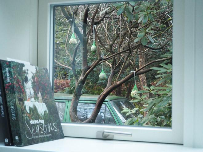Großes Kino: Der Blick aus unserem Küchenfenster