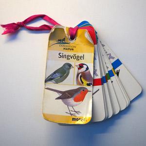 Vogelbestimmungs-Buch