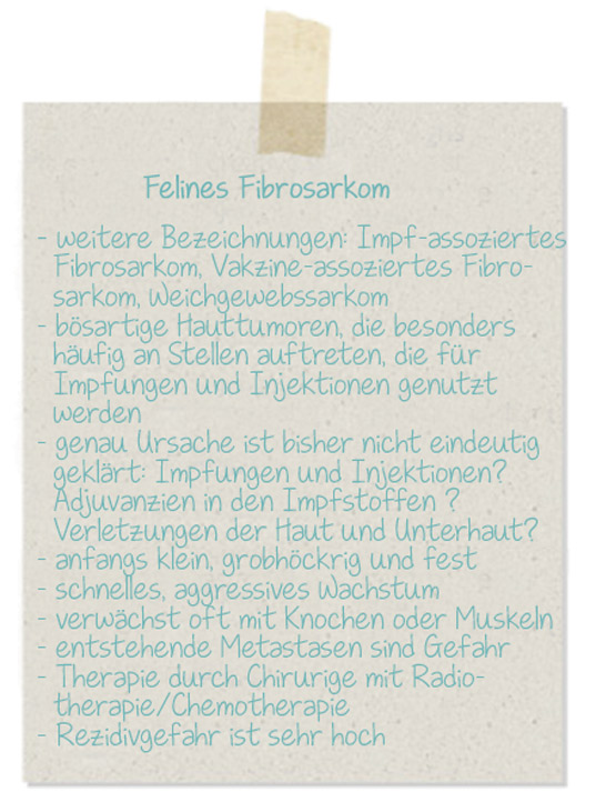 NotizFelinesFibrosarkom