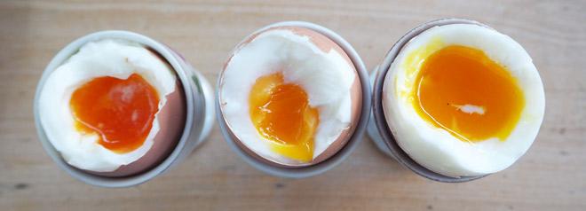 Unsere Hühner legen Eier mit verschieden farbigen Eigelben