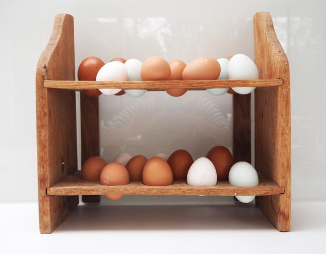 Viele verschiedene Eier: von Grünlegern, Marans, Braunlegern und auch weiße Eier